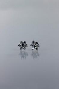 6 leave flower cubic zirconia earring